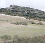 el-juncarejo-estepa-gilena-ruta-senderismo
