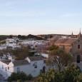 Visitar La Colegiata, plaza de toros, casa de los Hermanos Arjona, Universidad, Palacio de Govantes y Herdara, el Arco de la Pastora o el Palacio de los Cepeda.