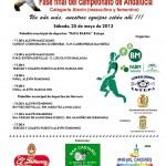Los alevines del Club Balonmano Estepa, cuarto mejor equipo de Andalucía en 2013