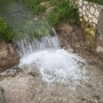 ADIF acuerda con Estepa, La Roda de Andalucía y Pedrera la creación de una nueva vía verde