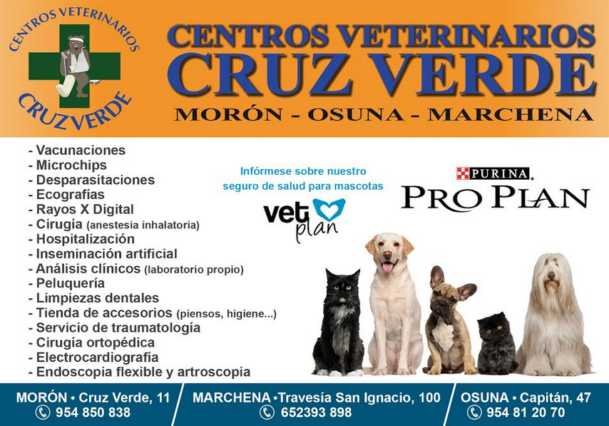 Veterinario-Osuna-Marchena-Morón-Sevilla-Estepa-Centro-Cruz-Verde
