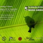Celebración del Día Mundial del Medioambiente en Estepa