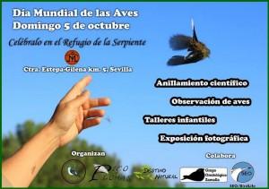 dia-mundial-de-las-aves-estepa-gilena-refugio-de-la-serpiente-pico-y-plumas-destino-natural-grupo-ornitológico-zamalla-seo-birdlife-sevilla