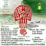 """IV Festival Solidario """"PROYECTO ESPERANZA"""" a beneficio de Cáritas"""