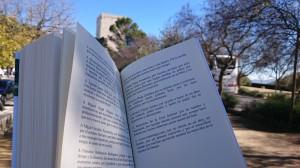 el-ladron-de-sentidos-angela-caceres-sevilla-estepa-libro-andalucia-cultura-02