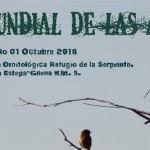 Celebración del Día Mundial de las Aves 2016 en Estepa
