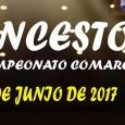 Hoy, en el Pabellón de Deportes Rafa Baena de Estepa se disputará la Final del Campeonato de Baloncesto Comarcal.