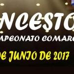 Final del Campeonato de Baloncesto Comarcal en Estepa
