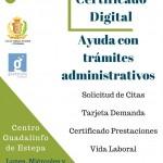 Ayuda con trámites administrativos en Estepa