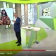 """Desde sus casas, miles de andaluces vivieron la fiesta del lunes a través de sus pantallas gracias a la cobertura que dio del acontecimiento el programa de Canal Sur """"Andalucía Directo""""."""