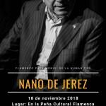 Flamenco en Estepa: Nano de Jerez