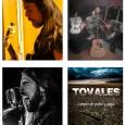 Alfonso Tovales pertenece a la banda de rock TOVALES, formada por Alfonso Borrego, líder de la banda de rock A MEDIA TEA, anteriormente conocida como A PELO Y TÚ (Banda Tributo a Platero y Tú). Esta nueva propuesta surge del deseo de seguir adelante con sus composiciones propias.