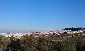 El tiempo en Estepa (Sevilla). Previsión meteorológica